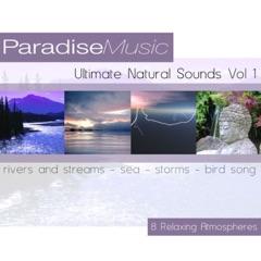 Ultimate Natural Sounds, Vol. 1