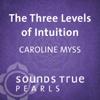 Caroline Myss - Three Levels of Intuition: Essential Skills of the Co-Creator  artwork