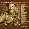 Hound Dog Taylor - A Tribute, Various Artists