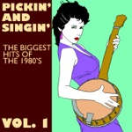 Pickin' On Series - Girls Just Want to Have Fun
