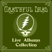 Grateful Dead - I Know You Rider