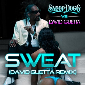 Snoop Dogg & David Guetta - Sweat (Snoop Dogg vs. David Guetta) [Remix]