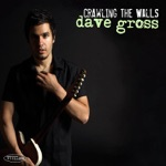 Dave Gross - Crawling the Walls