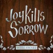 Joy Kills Sorrow - Such Great Heights