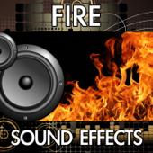 Bonfire Fire Burning [Sound Effect]