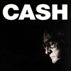 Johnny Cash - American IV: The Man Comes Around  artwork