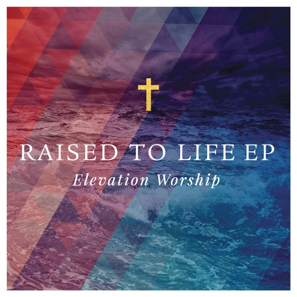Raised to Life - Single