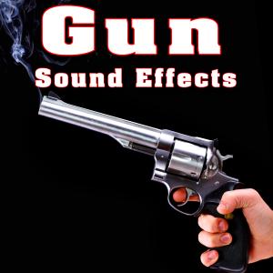 Sound Effects Library - 308 Shotgun Blasts at Medium Range