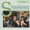 A Collection Of Jigs And Reels - Shaskeen
