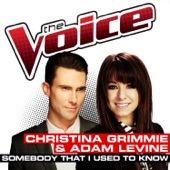 Somebody That I Used To Know (The Voice Performance) - Single