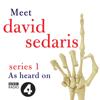 David Sedaris - Meet David Sedaris: Series One artwork