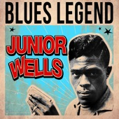 Junior Wells - Little By Little