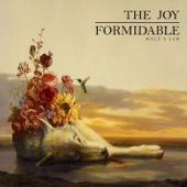 The Joy Formidable - This Ladder Is Ours
