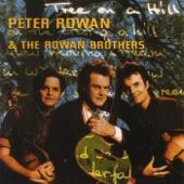 Peter Rowan - Darlin Pal of Mine