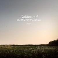 Sometimes By Goldmund On Apple Music