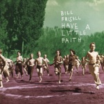 Bill Frisell - Have a Little Faith In Me
