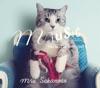 miusic 〜The best of 1997-2012〜 ジャケット写真