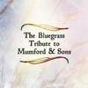 The Bluegrass Tribute to Mumford Sons