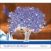 Harvest Remixes ジャケット写真