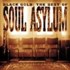 Soul Asylum - Somebody to Shove