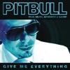 Give Me Everything (feat. Ne-Yo, Afrojack & Nayer) [Alvaro Remix] - Single ジャケット写真