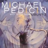 Michael Pedicin - Why Stop Now