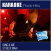 The Karaoke Channel - Sing Like Steely Dan - The Karaoke Channel