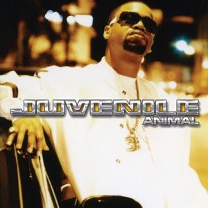 Animal - Single Mp3 Download