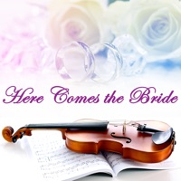 Here Comes the Bride Strings - Here Comes the Bride - Single