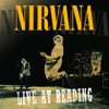 Nirvana: Live At Reading ジャケット写真
