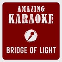 Bridge of Light (Karaoke Version) [Originally Performed By Happy Feet Two & Pink] - Single