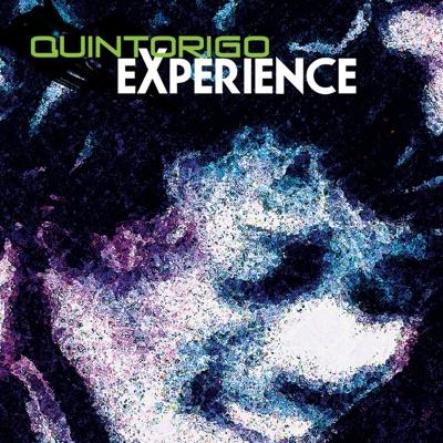 Quintorigo Experience - Quintorigo