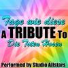Tage wie diese (A Tribute to Die Toten Hosen) - Single, Studio All-Stars