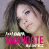 Amándote (feat. Jandy Feliz)