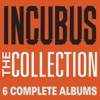 The Collection Incubus