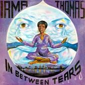 Irma Thomas - Turn My World Around