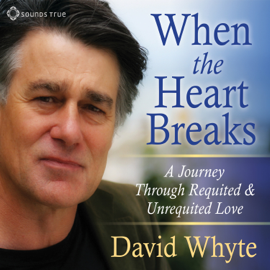 When the Heart Breaks: A Journey Through Requited and Unrequited Love audiobook