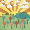 Braiden Wood - Broken Hearted Warriors