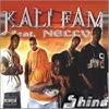 Shine - Single, Kali Fam Featuring Nelly
