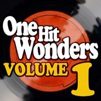 One Hit Wonders - Vol. 1