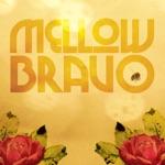 Mellow Bravo - Señorita