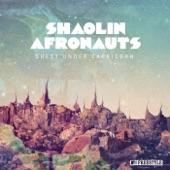 The Shaolin Afronauts - Brooklyn