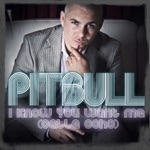 Pitbull - I Know You Want Me (Calle Ocho) [More English Extended Mix]