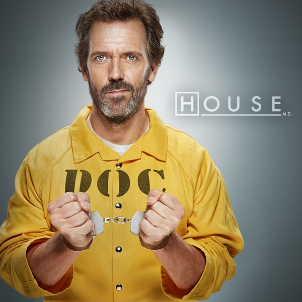 House season 8 on itunes for House md music