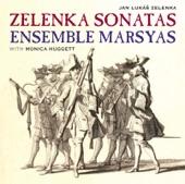Sonata No. 5 in F Major, ZWV. 181/5: I. Allegro artwork