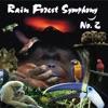 Rain Forest Symphony No 2