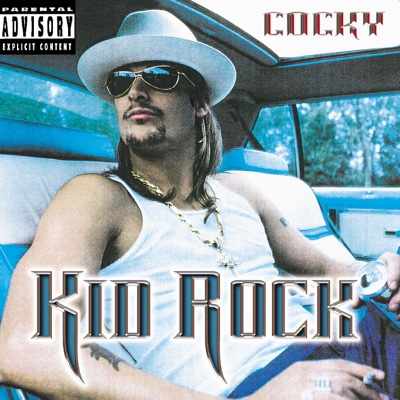 Picture (feat. Sheryl Crow) - Kid Rock song