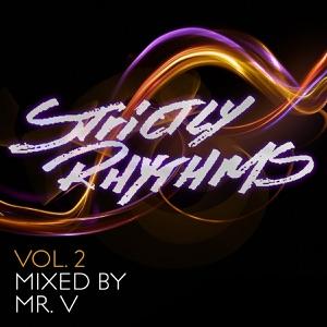 Strictly Rhythms, Vol. 2 (Mixed By Mr V)