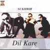 Dil Kare