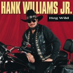 Hank Williams, Jr. - It's a Start